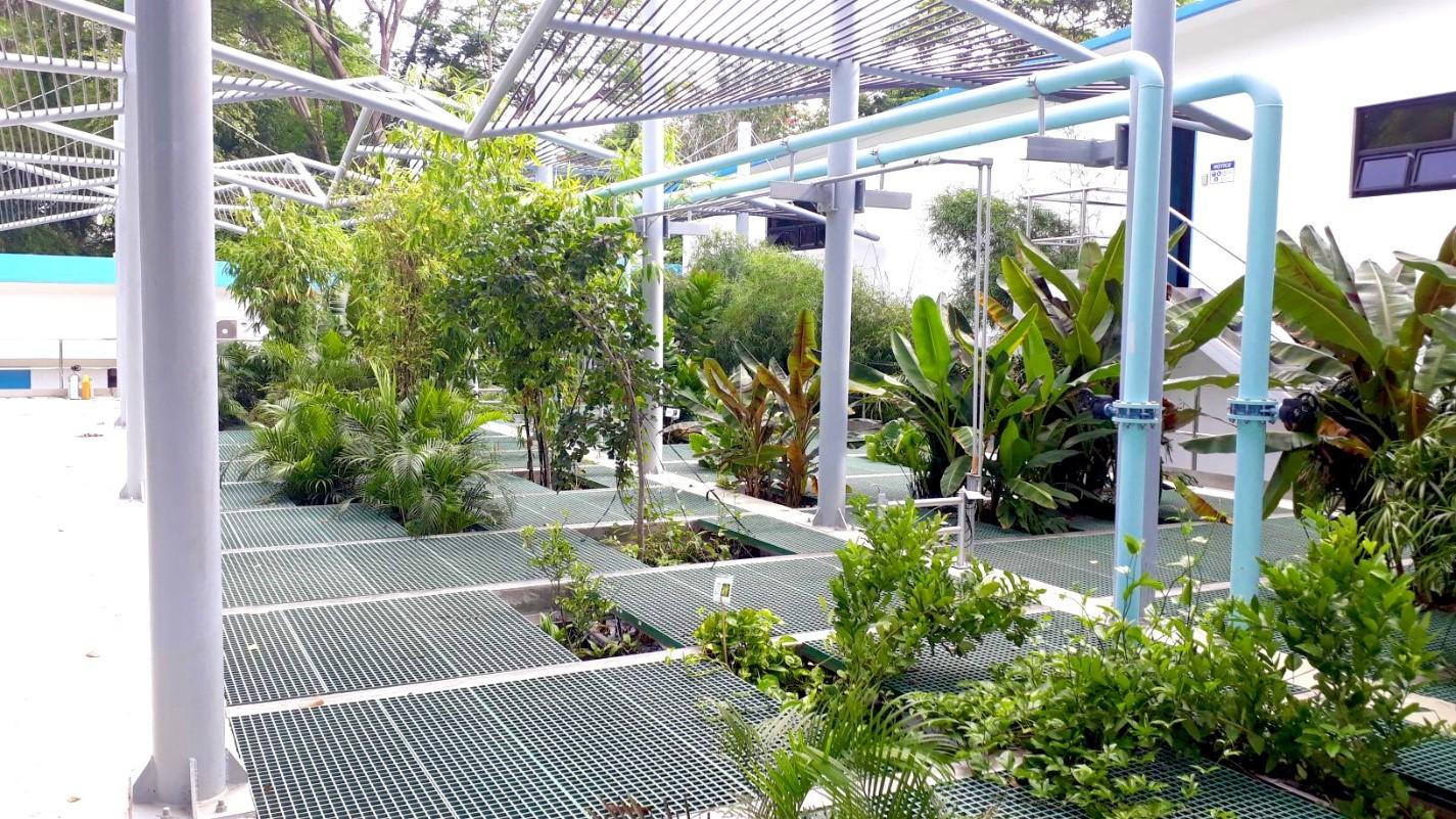 Interior photo of Organica's Laguna Industrial Park treatment facility